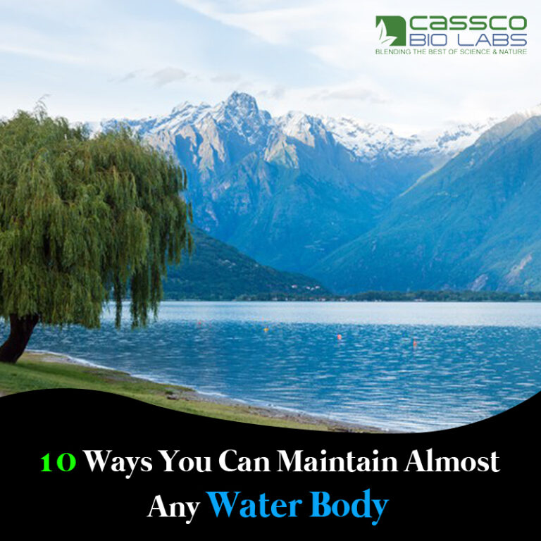 10 Ways You Can Maintain Almost Any Water Body